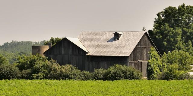 Closed-up unpainted barn with derelict silo, Halton Hills, Ontario