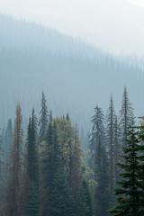BC Wildfire Smoke