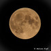 Full Moon 🌕 Buck Moon 🌚