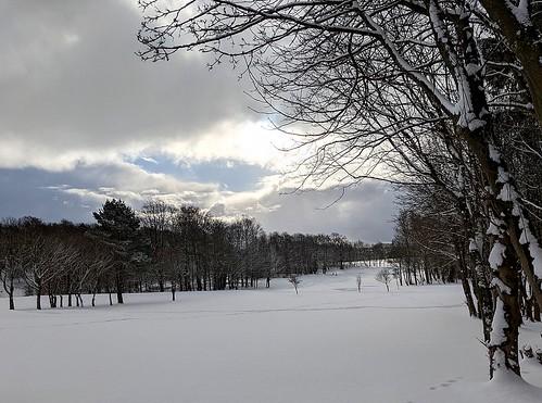 Snow on Balbirnie Golf Course