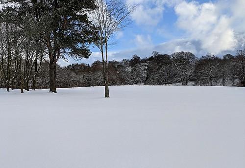 Snow on Balbirnie