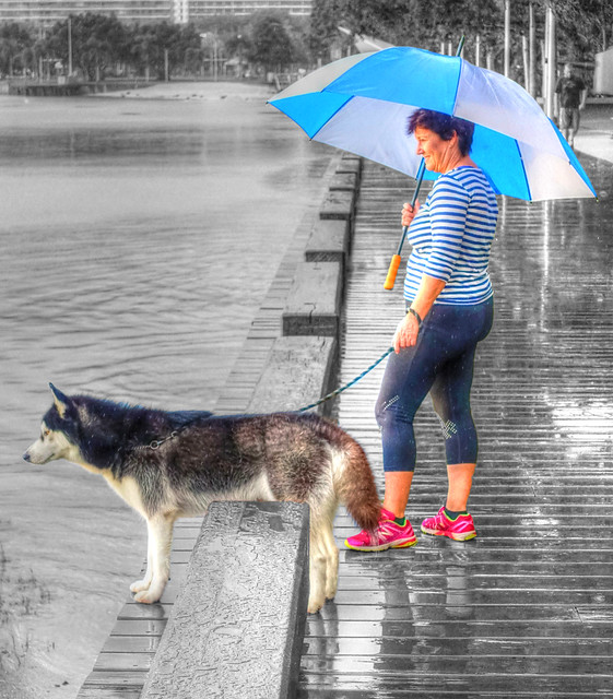 Womans Best Friend - May 23, 2015