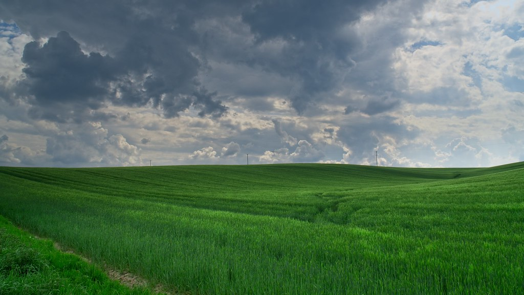 Green Fields Angry Skies