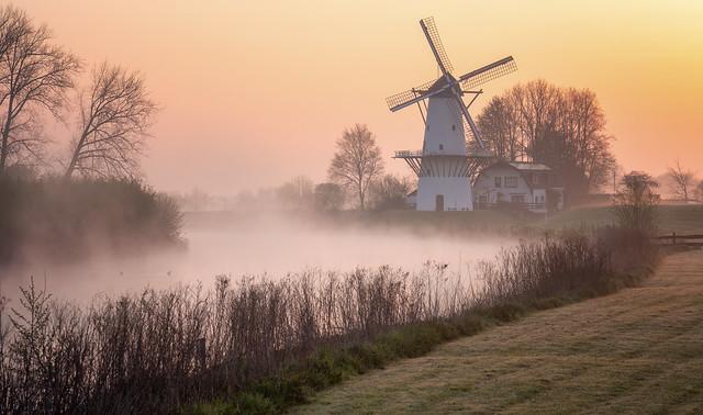 De Vlinder   Holland