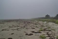 Clam Harbour Beach Provincial Park