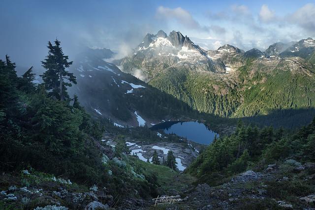 'Alpine Espresso' - Swiss Canadian Alps