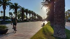 Salou Boulevard Evening