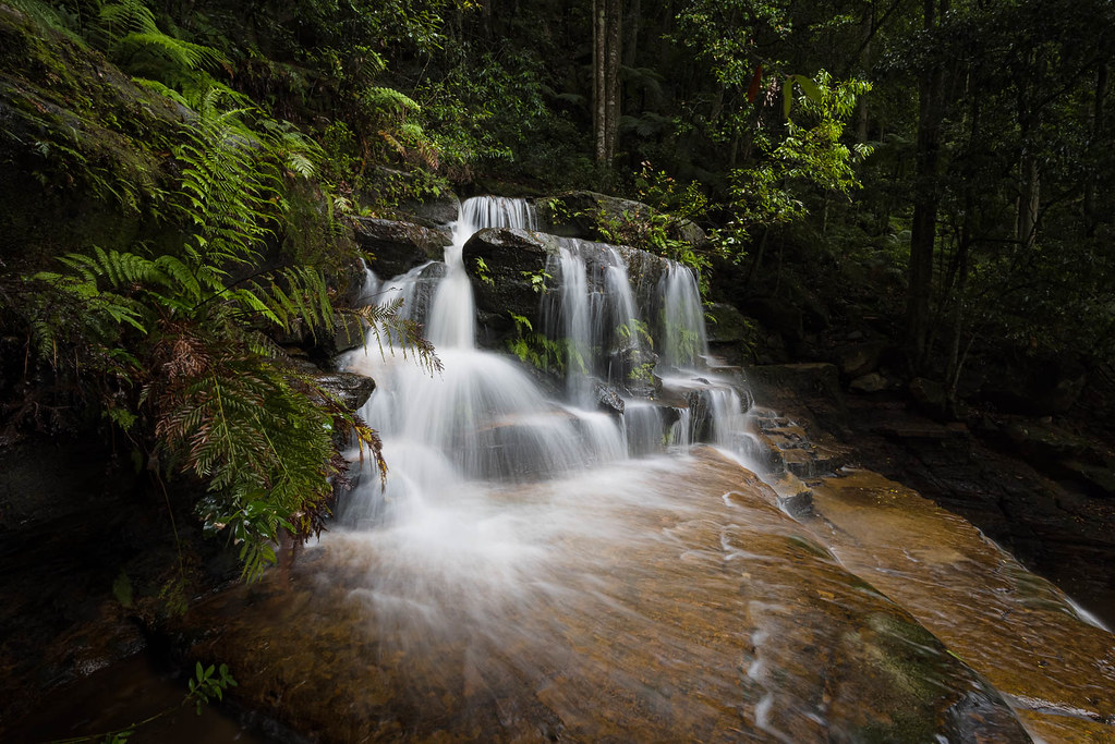 Valley of the Waters || Blue Mountains {Explore 170, 2021/08/02}