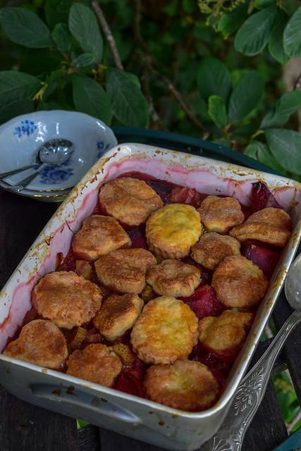 Cobbler de rhubarbe et prunes à la vanille et badiane_