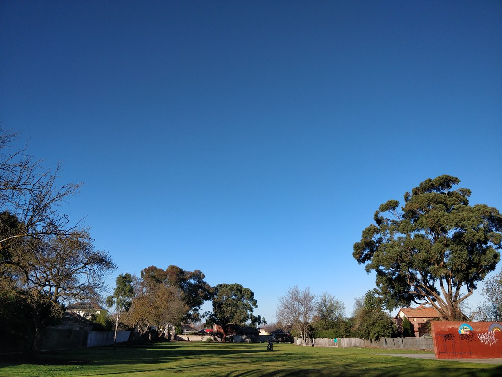 Wattle Grove Reserve on a sunny Winter Monday