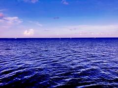 Somewhere deeply in the ocean #ocean