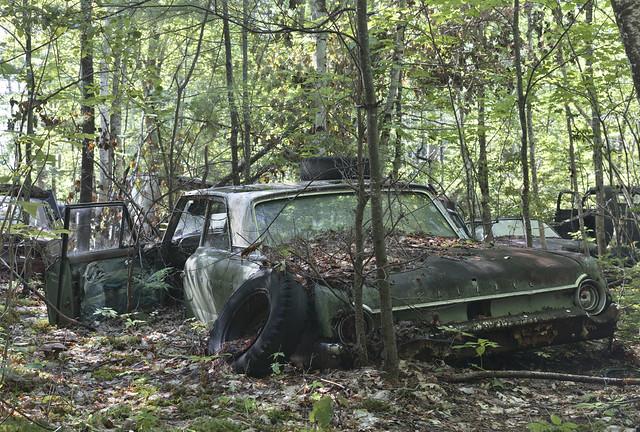 North Woods Junkyard