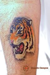 Minha tatuagem de Tigre do antebraço direito * My right forearm Tiger tattoo * Mon tatouage de tigre sur l'avant-bras droit * Mi tatuaje de tigre en el antebrazo derecho * 私の右前腕の虎のタトゥー * 我的右前臂老虎纹身 * Mein rechter Unterarm Tiger Tattoo * Il mio tatuaggio di