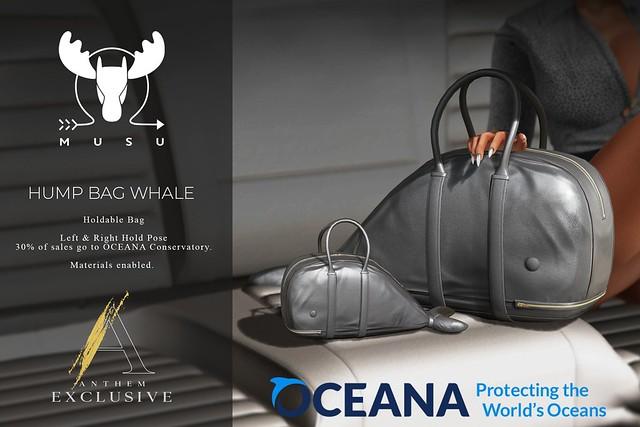 -MUSU- GIveaway! Hump Bag Whale!