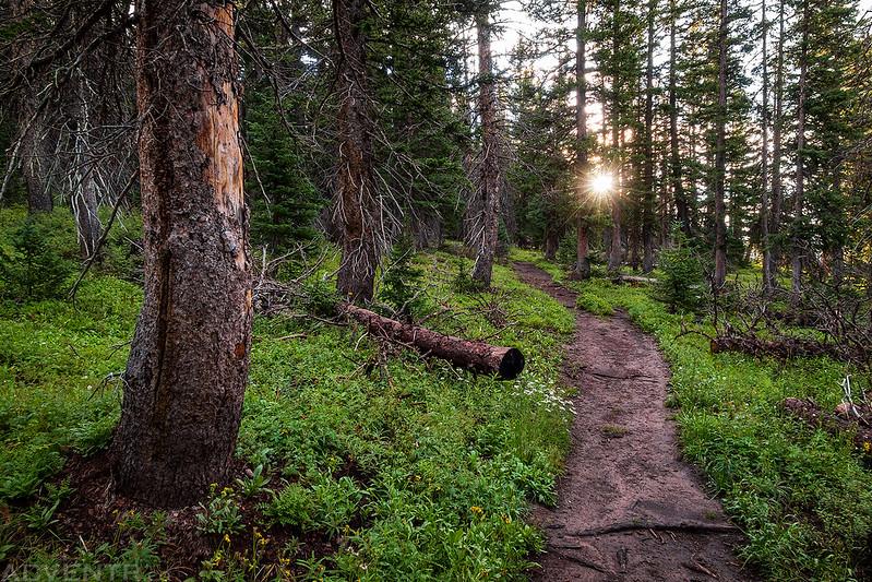 Hiking Toward The Sun