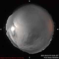 N-2021-08-03-0310_f
