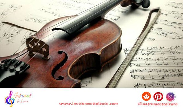 Violin Bow Parts and Their Functions