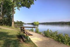 Bench View of Lake Barkley