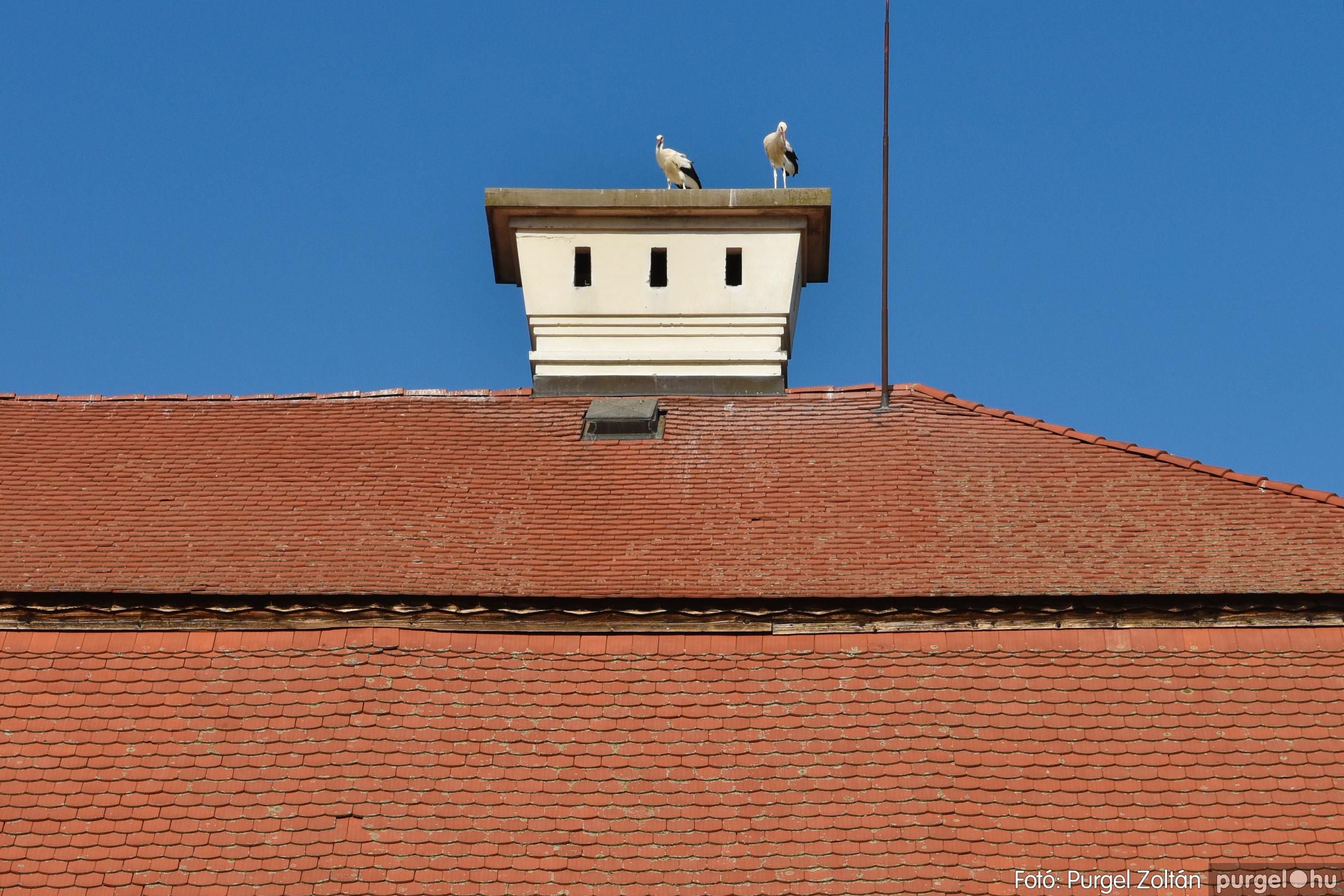 2021.07.31. 101 Családi nap Szegváron - Fotó:PURGEL ZOLTÁN© DSC_8451q.jpg