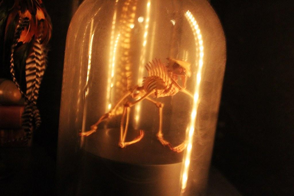 inside the bell jar