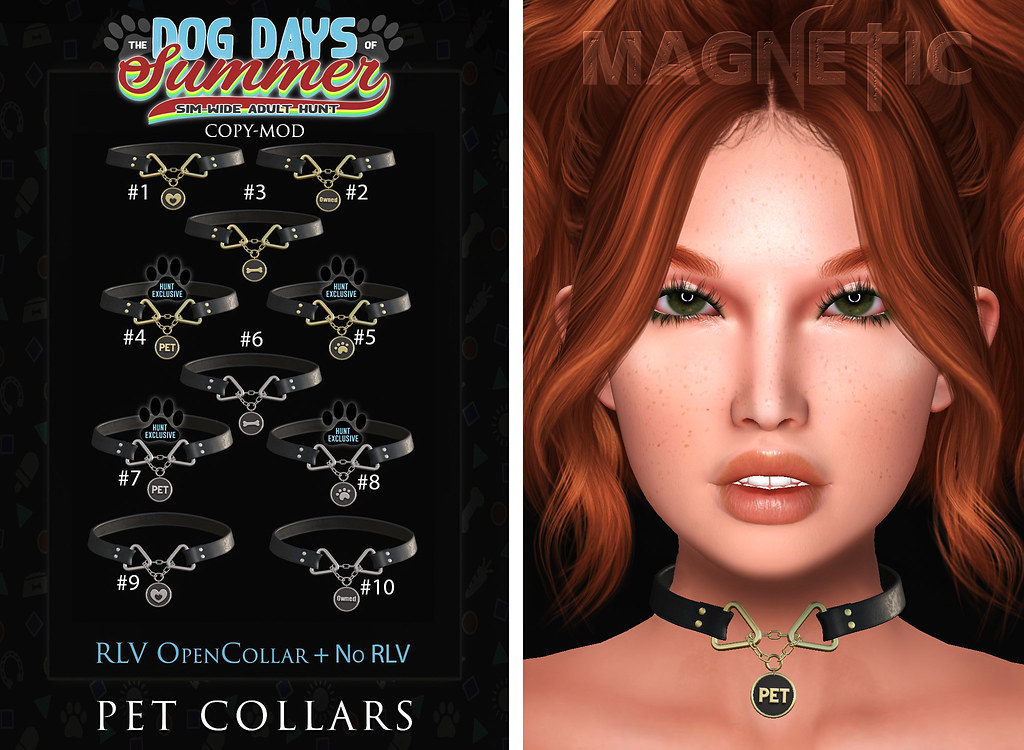 New! Magnetic – Pet Collars
