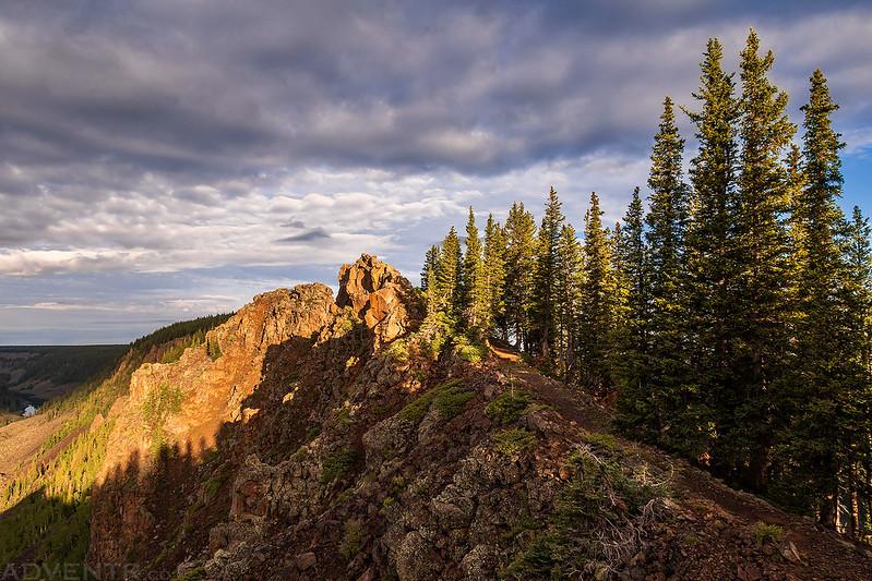Rock Ridge & Trees