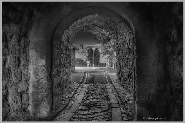 Tunnel under the Walls DSC_2302