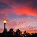 Sunset in East Oakland, California