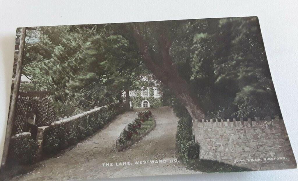 THE LANE  WESTWARD HO
