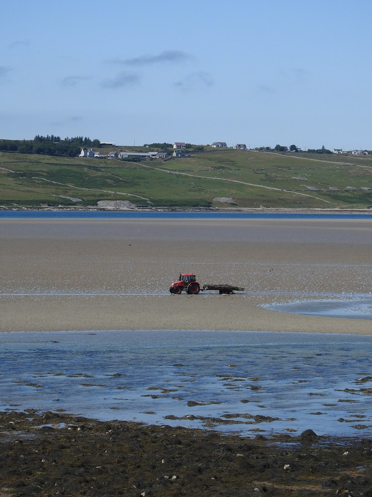 Oyster Beds' Tractor, Kyle of Tongue (3)