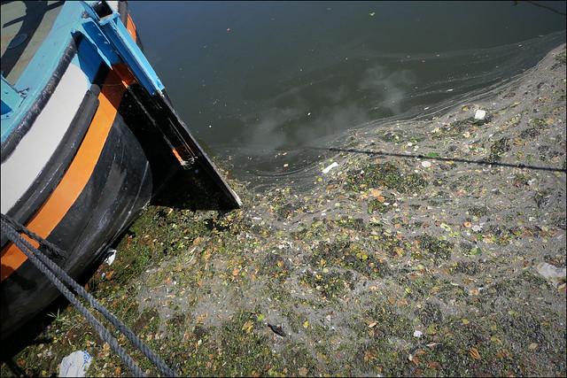 Flotsam and a barge. 2021.