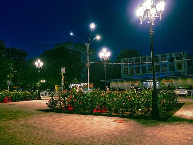 evening walk with a camera