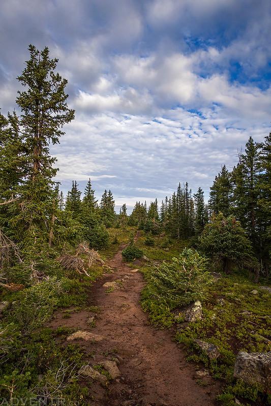 Trail Under Clouds