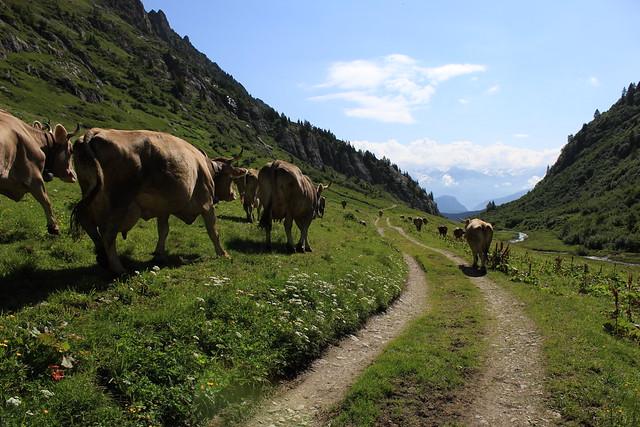Alpage d'Emaney