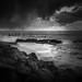 Corton Coastline