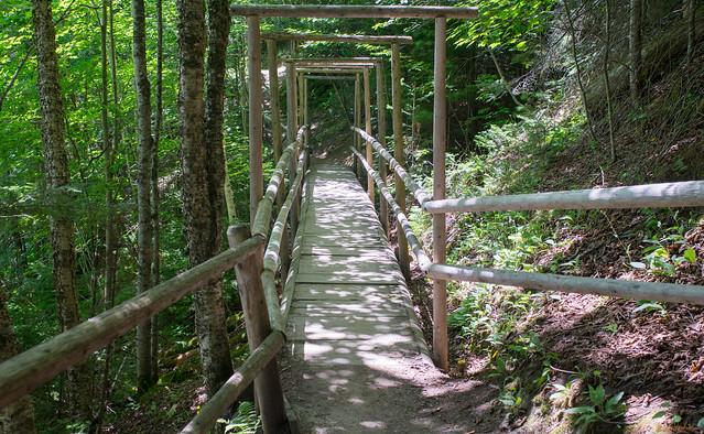 Sentier, trail, Parc des 7 Chutes, Saint-Georges, Beauce, Canada - 06932