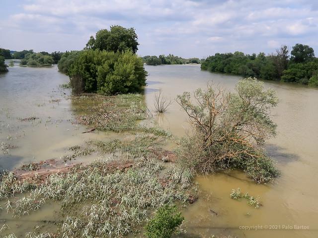 021Jul 20: Morava River Flooding 5