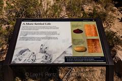 Swelter Shelter Dinosaur National Monument