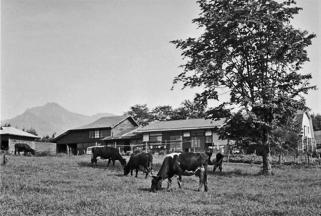 71-1117a Kyosato, Japan 1971