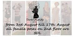 Serendipity SALE