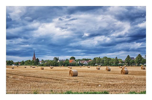 Irgendwo zwischen Brandenburg und Werder