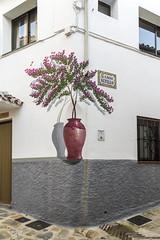 Spain - Malaga - Jubrique