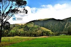 Cordillera de Angochagua