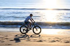 Beach Cruiser - Indian Harbour Beach, FL