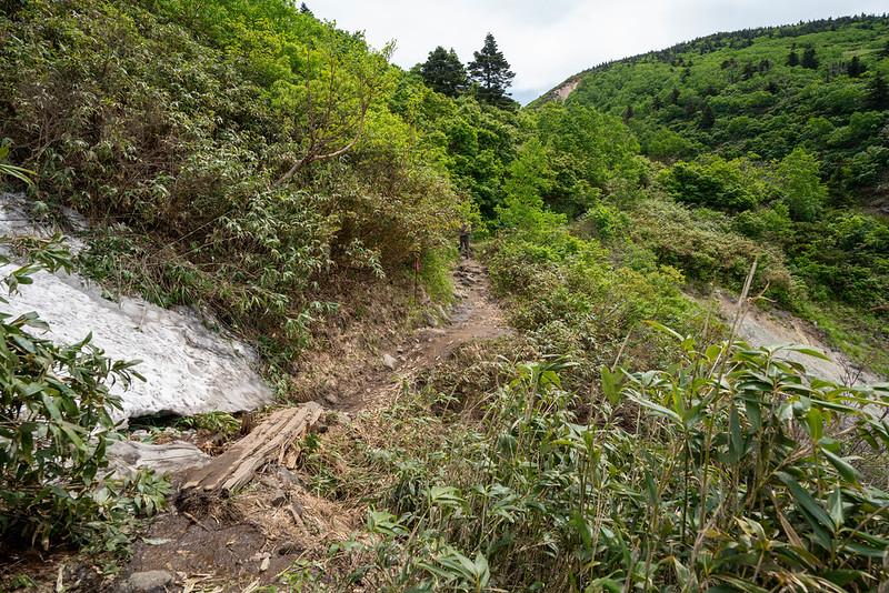 八甲田山 登山