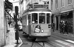 Tranvia de Lisboa IMG_3045