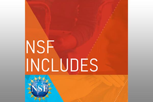 NSF Includes logo
