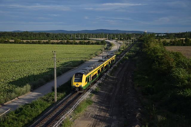 2021-08-02 (4) Trumau