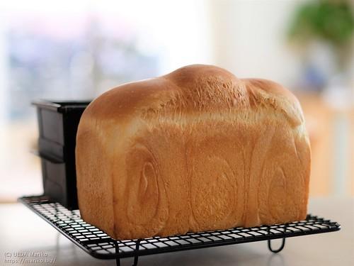 梅酵母食パン 20210620-DSCT6831 (2)