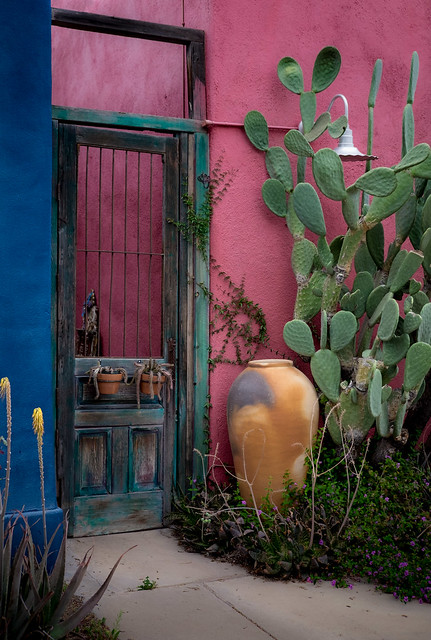 Tucson_DSF0759-Edit_SCY